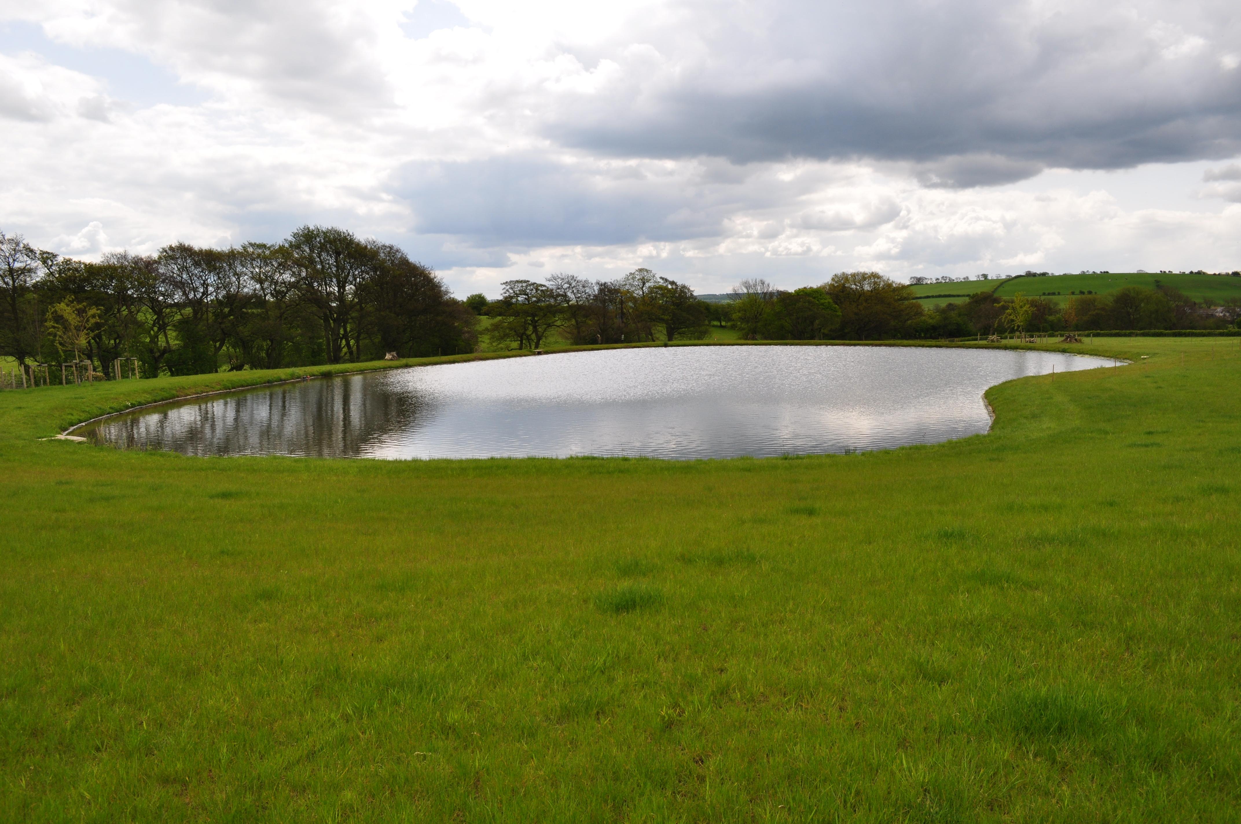 Landscaping Pond Banks : The landscape man habitat aid