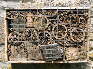 Bee Box for Solitary Bees